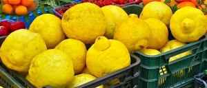 The lemons in Sorrento and the Amalfi Coast are huge